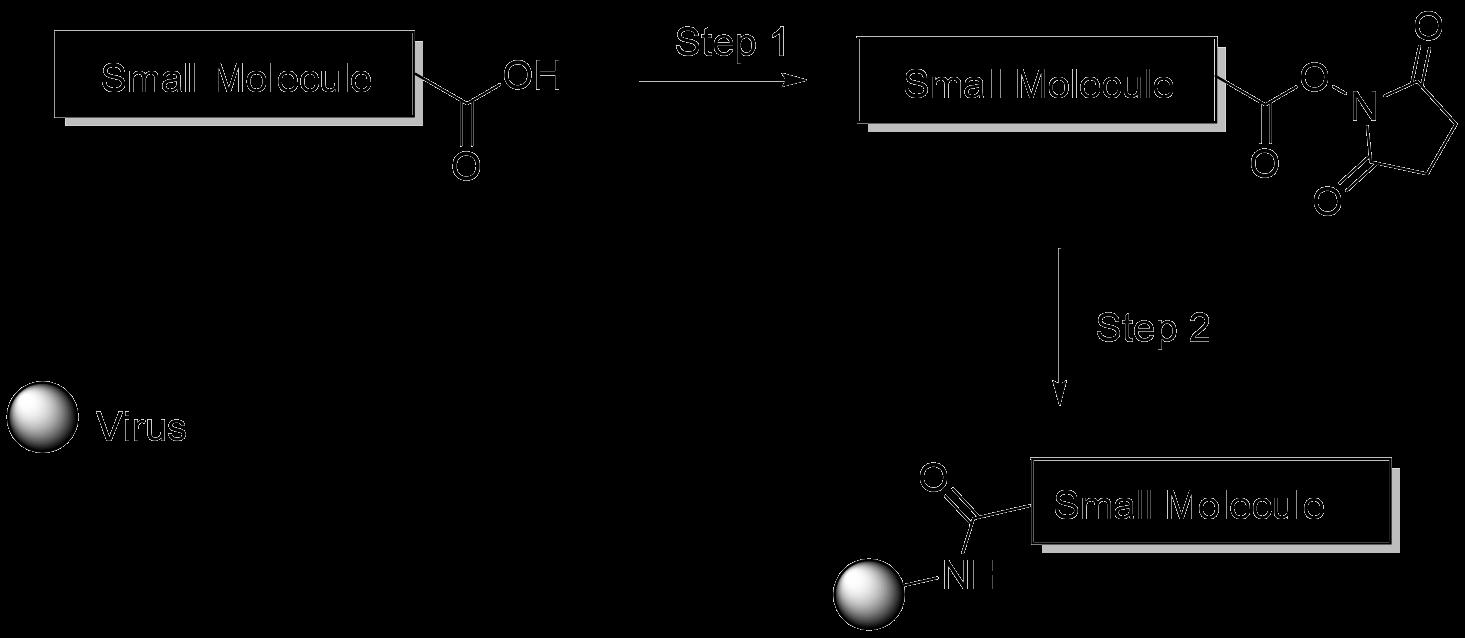 cm45401-labeling-chemistry.png